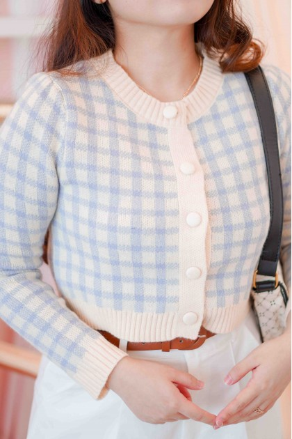 Ivy's Heart Gingham Knit Top in Blue