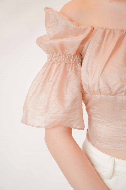 Glimmer Things Puffy Blouse in Champagne